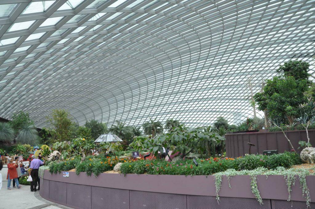 Kopuła Flower Dome w Singapurze
