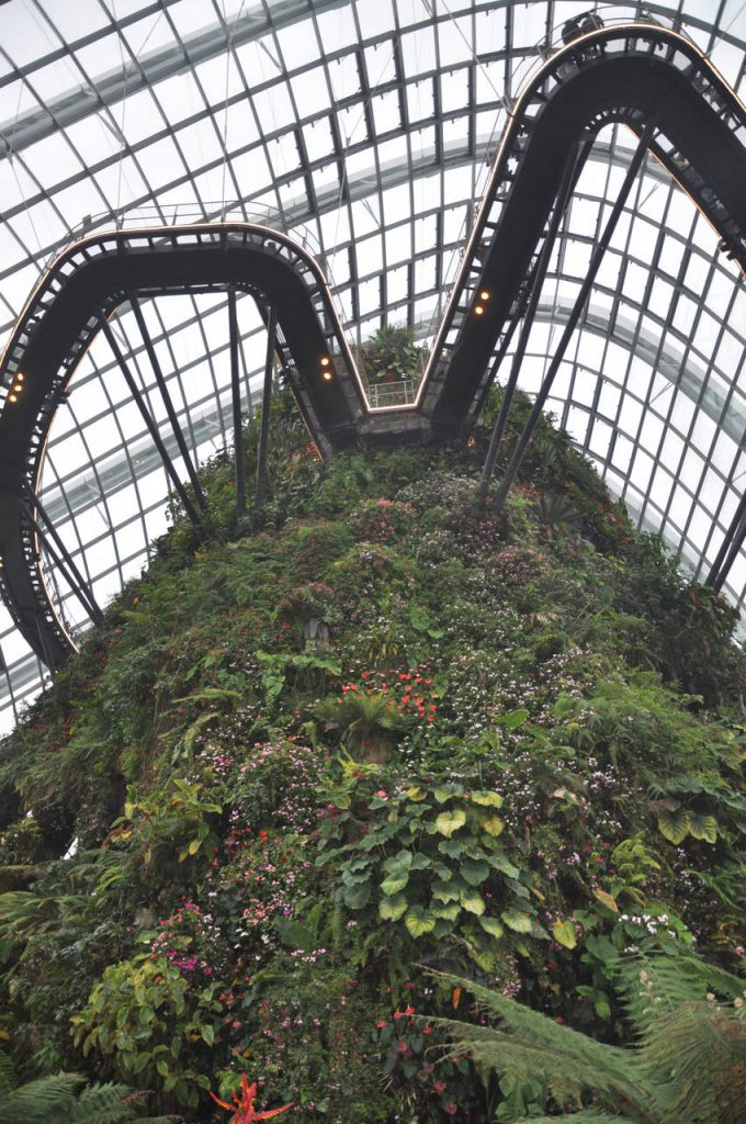 Cloud Forest w Singapurze