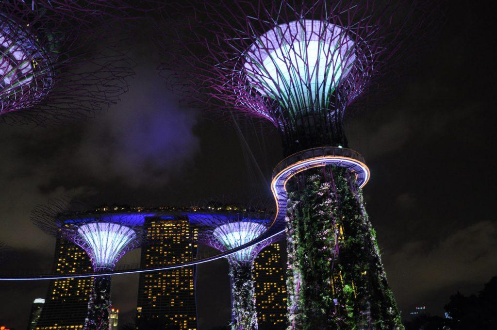 Pokaz świateł pod superdrzewami w Singapurze